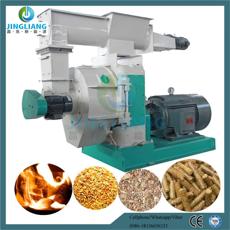 Professional Manufacturer Wood and Feed Pellet Machine
