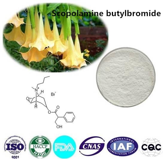 Scopolamine butylbromide 99% CAS NO:149-64-4 10g/bag