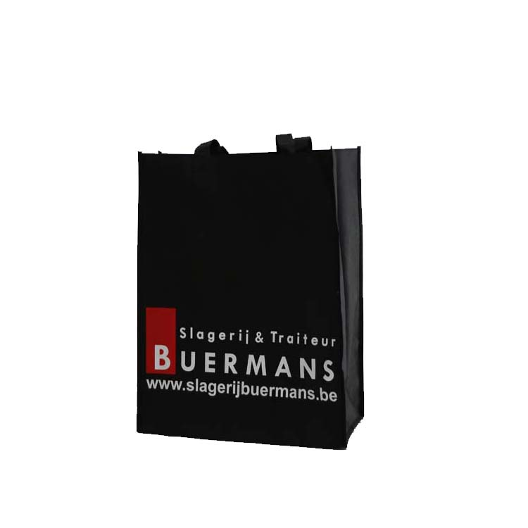 Hot selling shopping bag with logos With Strong Handle