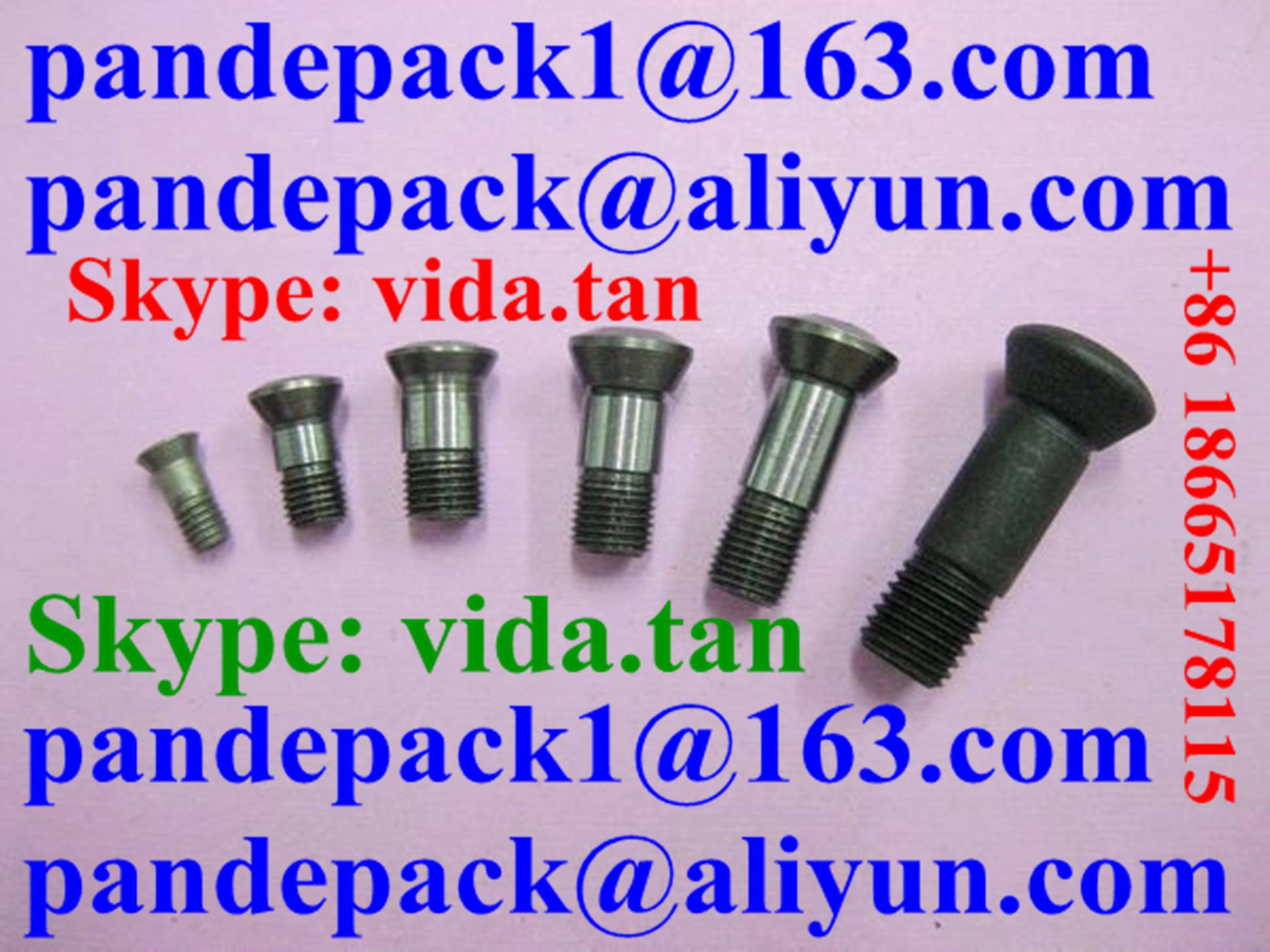 T2139 Torx Screw for Tool Holder/Walter Screw for Ball Head Tool Holder/CNC Tool Parts/Accessories