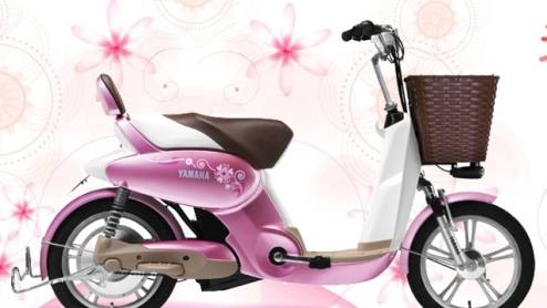 YT-EB-008 Xiuying Electric Bike