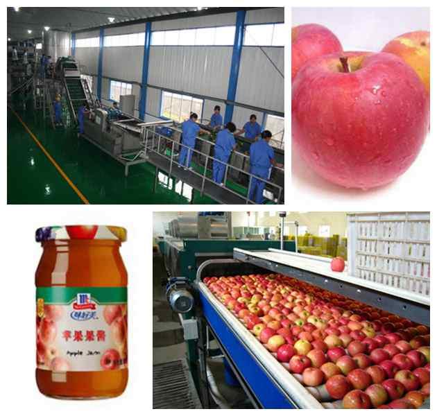 Apple jam production line machine