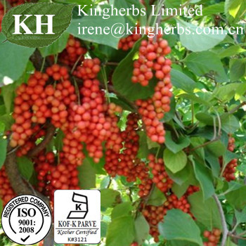 Schisandra Extract;Schisandrins 1%-10% by HPLC; Schizandrol A 2% by HPLC