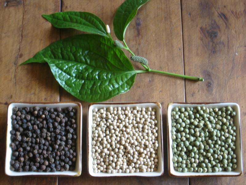 pepper for sale