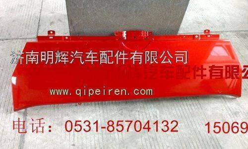 SINOTRUK WANGPAI Light truckFront Panel