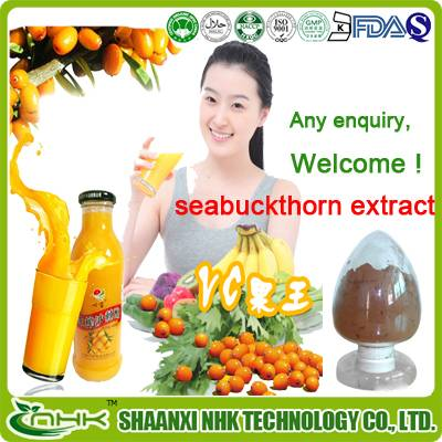 GMP factory supply high quality natural and pure seabuckthorn extract powder