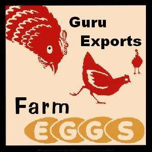 EGGS EXPORTERS, CHICKEN EGG SUPPLIER, FRESH EGGS WHOLESALERS INDIA