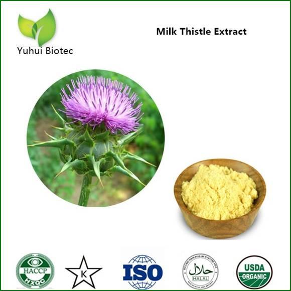 silymarin,silymarin extract,milk thistle extract,silymarin price,silymarin 80%