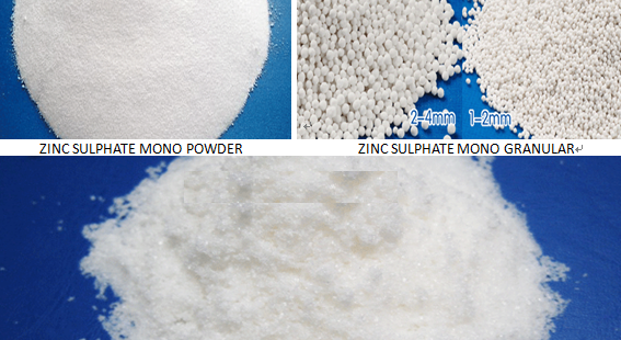 ZINC SULPHATE MONOHYDRATE/HEPTAHYDRATE FOR EXPORT