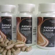 YACON (Regulates Blood Sugar, Reduces the Cholesterol)