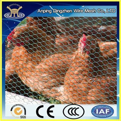 Green pvc chicken wire netting