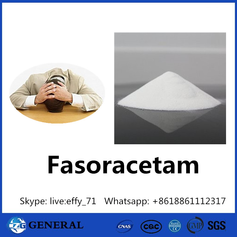 Improve Memory Pharmaceutical Raw Materials Fasoracetam 110958-19-5