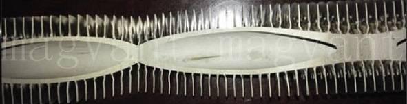 laser welded fin tubes ( finned tubes)