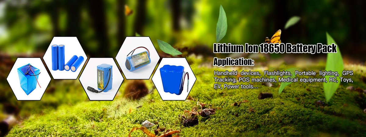 Custom Lithium-ion Battery Packs and Cells