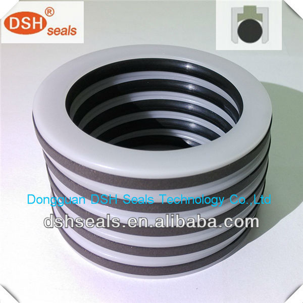 hydraulic seals, heavy duty seals, Teflon seals