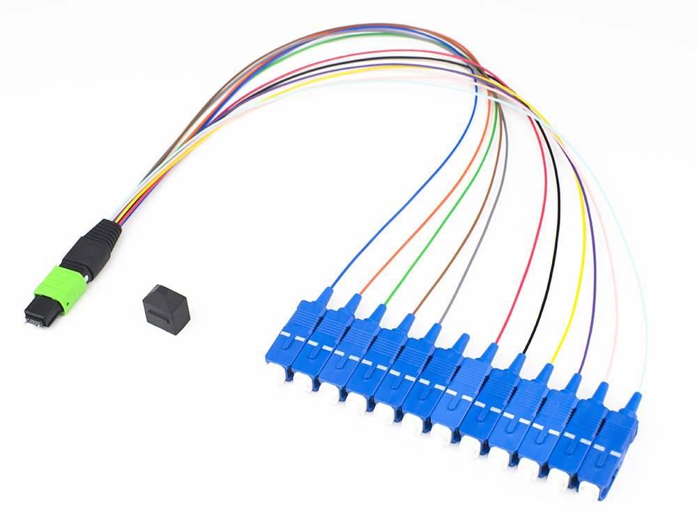 AIFIBER 12Fiber MTP/APC-SC/UPC Male Fanout Patch Cord