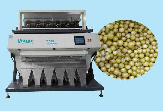 Hot-Sale high quality LED CCD Currant Color Sorter