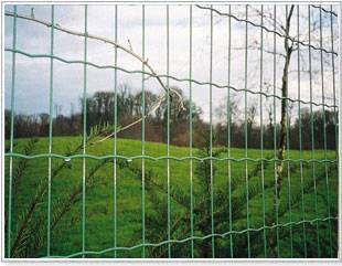 Railway Fence/Balcony Fence/Airport Fence/China Professinal Factory