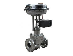 Top-Guided Single-Seated Control Valves