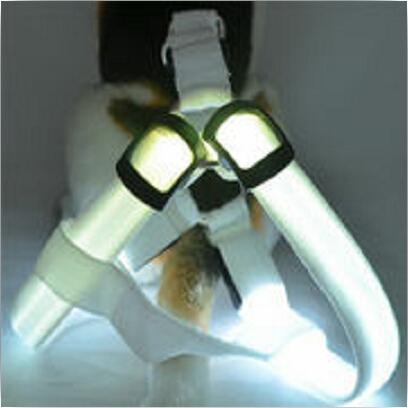 LED Pet Safety Collar Glow Flash Light Belt Leash