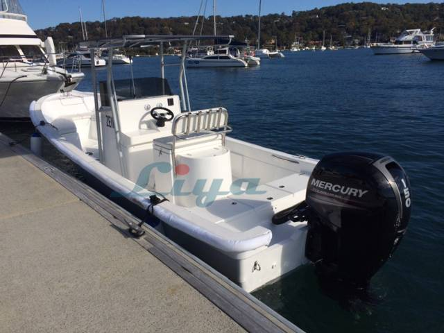 Liya fiberglass fishing boat SW580 with CE certificate