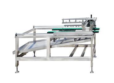 Tofu Cutting Machine