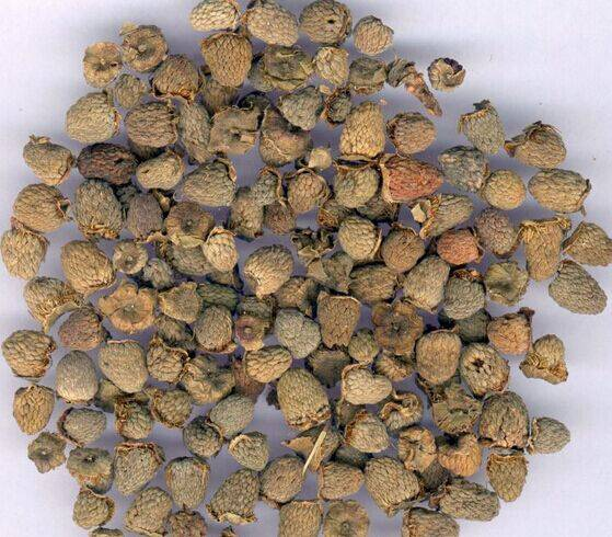 Rasberry Fruit Extract 100%pure powder 4:1