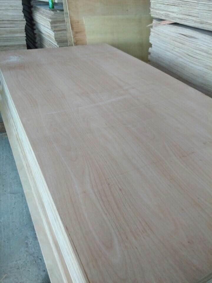 Sell Birch plywood 4x8 11mm