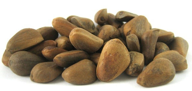 Pine nuts from Russia in stock now