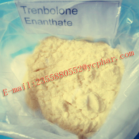 Injectable Anabolic Steroids Trenbolone Promote Muscle Gains Trenbolone Enanthate