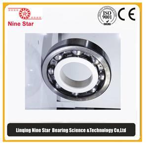 6236/C3VL2071 insulated bearing