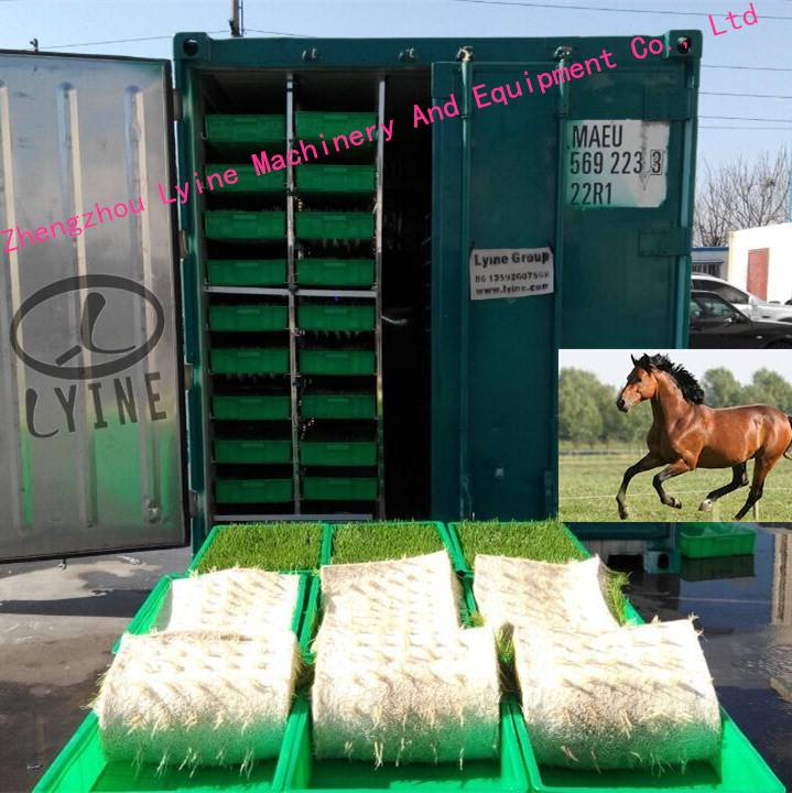 Automatic Horse Feed Sprouting Machine Barley Growing Machine/barley cultivating machine