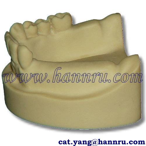 Dental model PIM-02 Partially Edentulous Implant Insertion Model - Hann Ru
