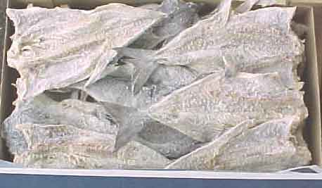 Quality DRY SALTED COD FISH