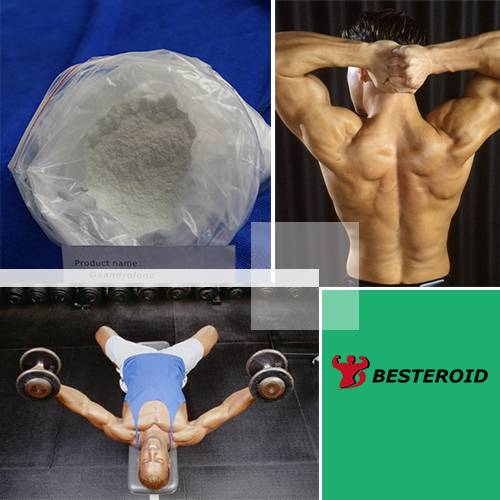 High quality anabolic steroid powder Mesterolone with good price CAS 1424-00-6