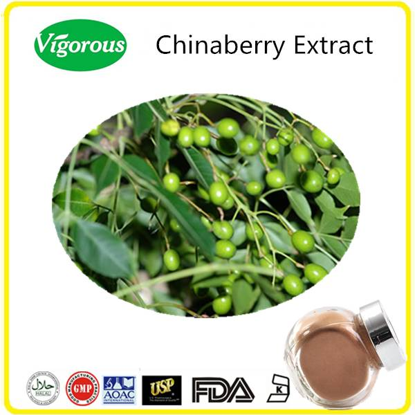 Kosher Halal Melia azedarach Extract/Melia azedarach Powder/Chinaberry Extract