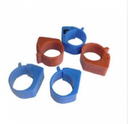 RFID animal foot rings  dove tags