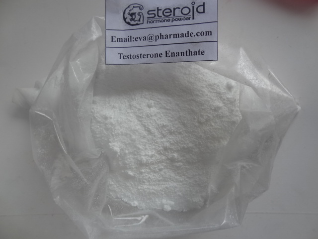 Testosterone Enanthate Powder Steroid Super discreet shipping by privateraws