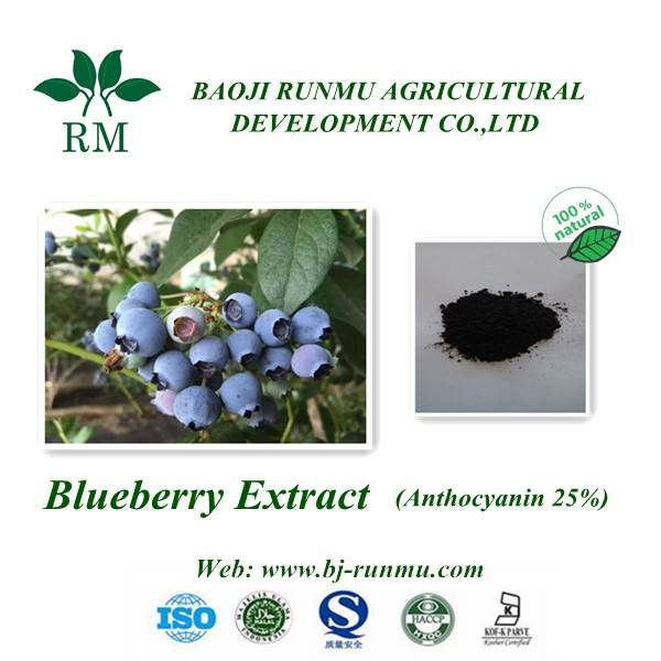 Blueberry anthocyanidins 25%