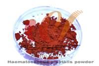 2% Astaxanthin powder