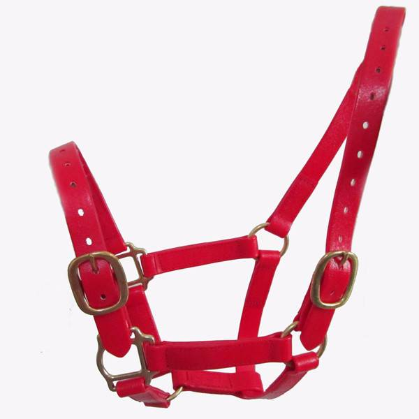 wear-resistant pvc horse halter with brass hardware