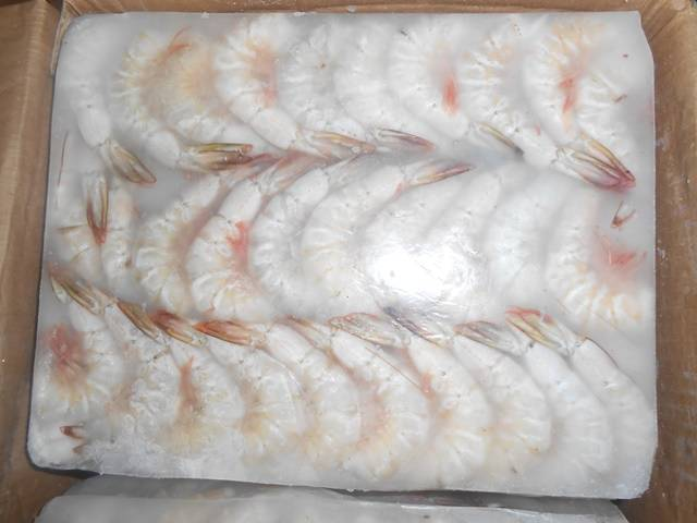 WHITE SHRIMPS HLSO