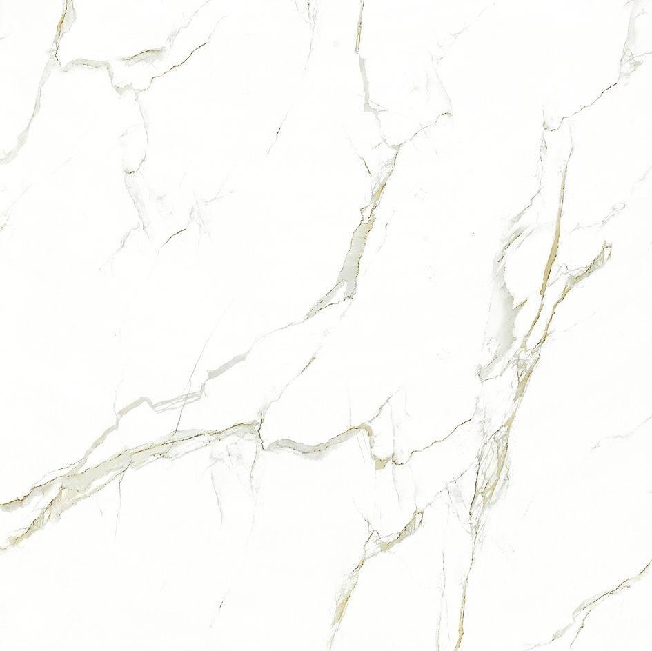 800*800mm Polishing Glaze Porcelain Tile       Floor/Wall      item No. 2-GX8102