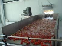 Fruit paste processing equipment,Fruit juice making line ,tomato paste produce machine