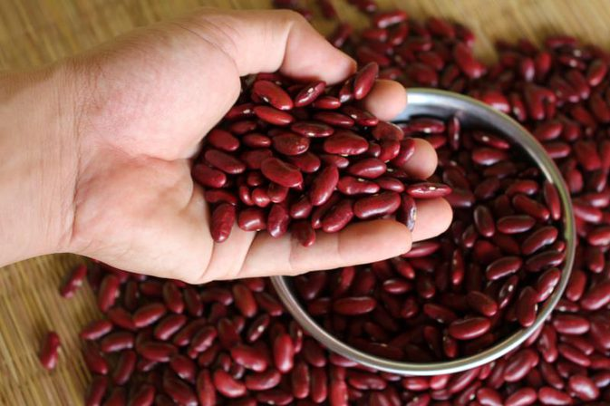 Green Mung Beans, White Kidney Beans, Broad Beans, Speckled Kidney Beans, Fava Beans