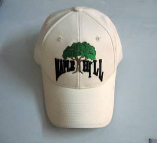 100% Cotton Promotional Caps