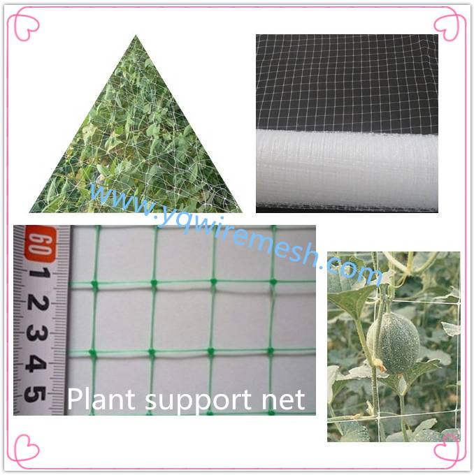 2016 Hot-sale Plastic Plant Climbing Support Net