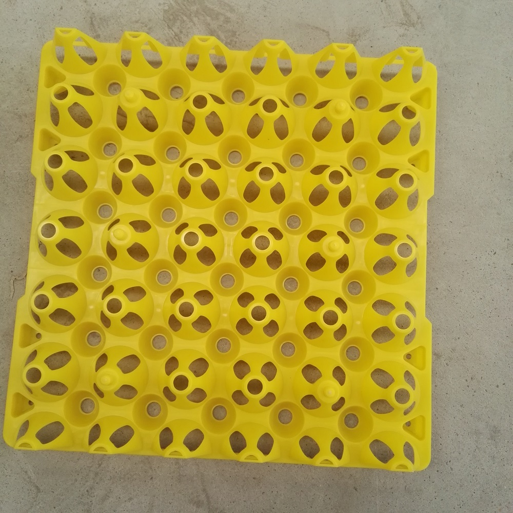 plastic chicken egg tray 30 eggs