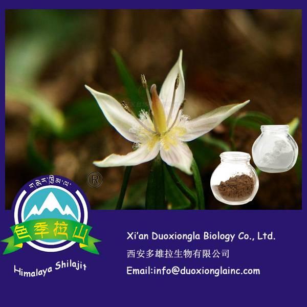 India Swertia Extract
