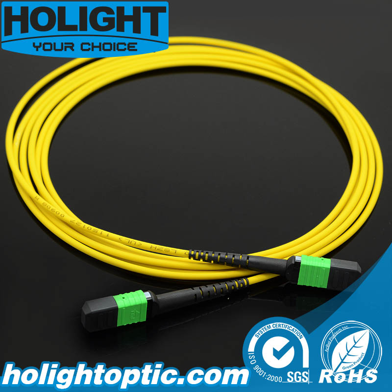 MPO Sm Fiber Optic Patch Cord